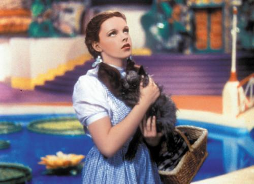 Toto-and-Dorothy-toto-the-wizard-of-oz-11525939-500-363